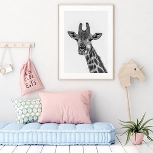 Plakát - Žirafa (S040009SA4)
