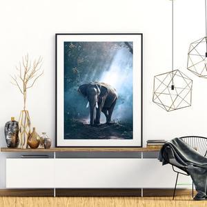Plakát - Slon v džungli (S040020SA4)