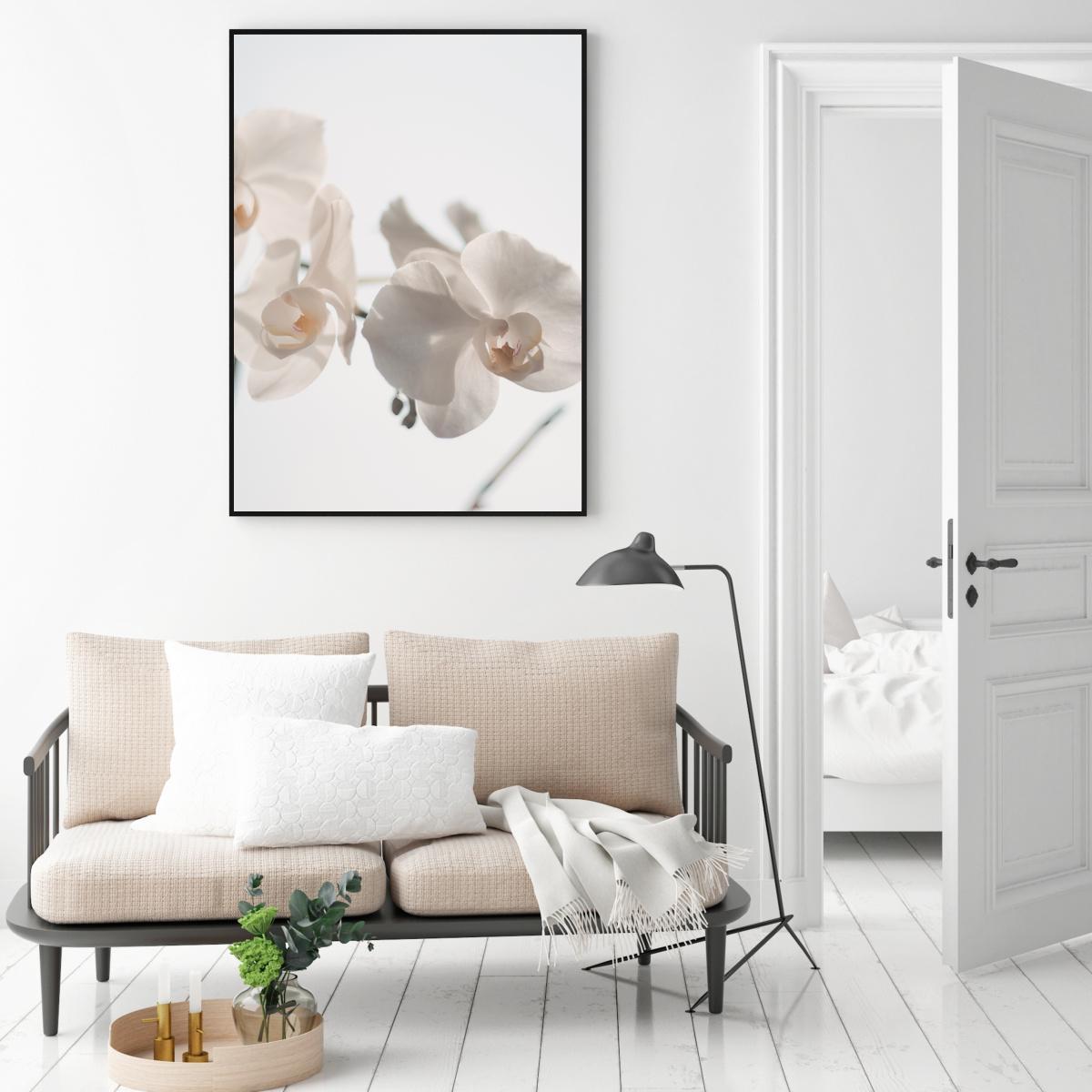 Plakat - Bijela orhideja (S040024SA4)