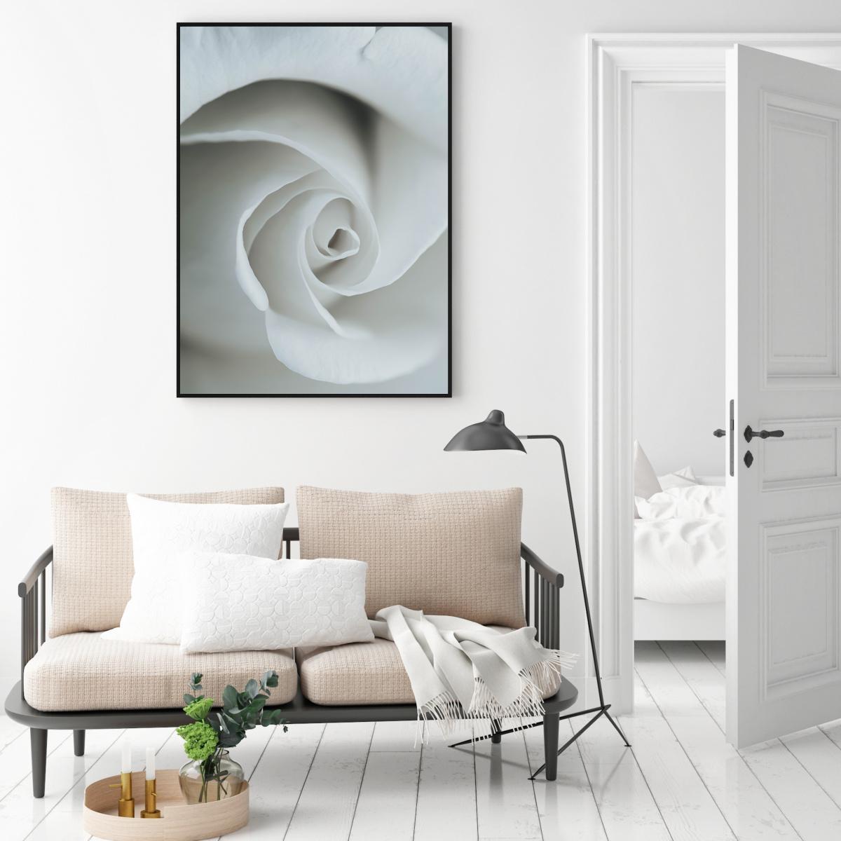 Plakat - White Rose (S040045SA4)